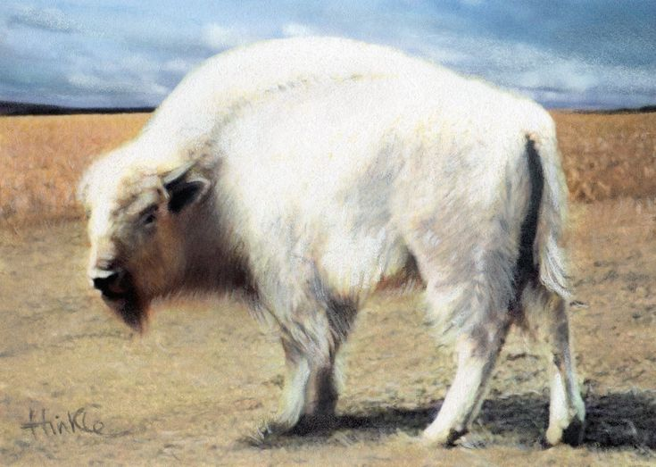 The White Buffalo - The Lost And Found