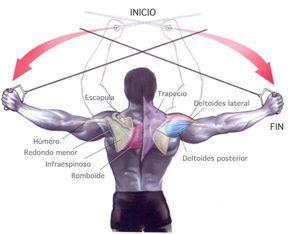 Os mostramos como hacer ejercicios de hombros con una polea alta; vamos, lo que son propiamente cruces inversos con cables para los deltoides posteriores.