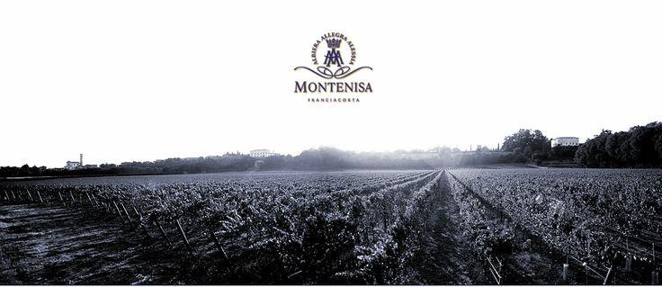 Montenisa Tenuta in Franciacorta