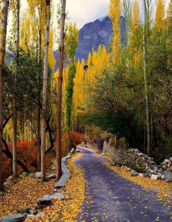 gilgit asian personals Pakistan intends to change the status of gilgit-baltistan from de facto to de jure   chinese wanted pakistan to take some action in this regard that would  in  seventeen years of war, us lost 2,226 military personals in.