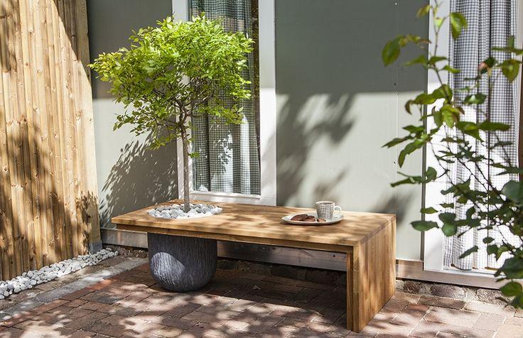 Funktionelles Gartenmöbel: So bauen Sie eine schattenspendende Baumbank selber