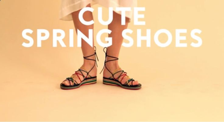 Super sweet puppies stumble and hop around Gucci mules, Chloé sandals, Prada ballet flats, and more.