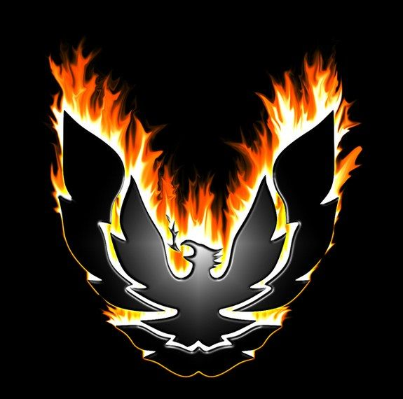 Trans AM Firebird Logo