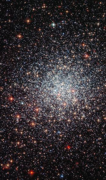 Google+ Klotformiga stjärnhopar är täta samlingar av stjärnor som hålls samman av sin egen tyngd, som kretsar runt galaxer som satelliter. Bilden visar tydligt den symmetriska formen av NGC 1783 och koncentrationen av stjärnor mot centrum, båda typiska egenskaper hos klotformiga stjärnhopar.