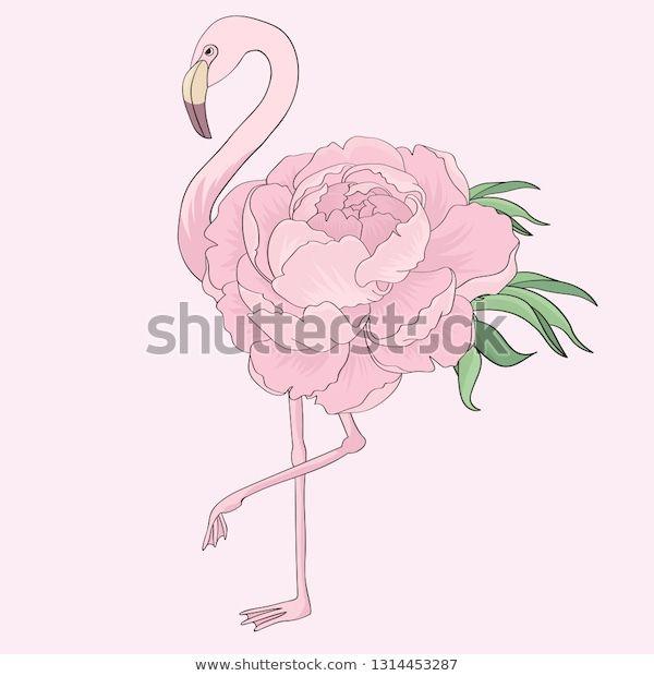 Стоковая векторная графика «Pink Flamingo Peony» (без ...