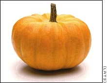 the pumpkin gospel....must do next year...I always forget about it until after Halloween!