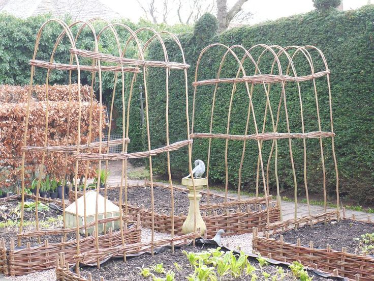 raised bed with bean tunnel