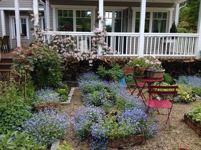 14 Lieblinge Die Einen Cottage Garten Zaubern Ohne Arbeit In 2020 Cottage Garten Garten Garten Pflanzen