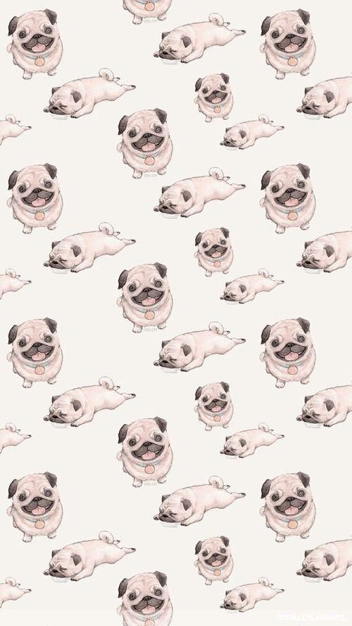 Imagem de pug, dog, and wallpaper