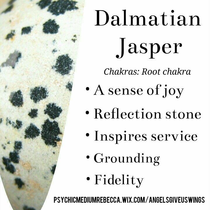 Dalmatian Jasper crystal meaning                                                                                                                                                                                 More