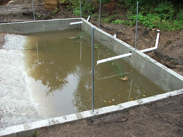 161 best images about duck pool ideas on pinterest for Duck hutch ideas