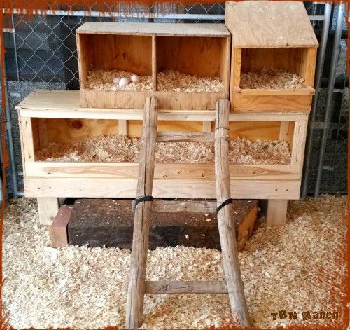 109 best Nest Box Ideas images on Pinterest | Chicken coops Chicken nesting boxes and Backyard chickens & 109 best Nest Box Ideas images on Pinterest | Chicken coops ... Aboutintivar.Com