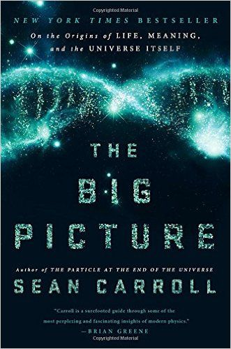 The Big Picture: On the Origins of Life, Meaning, and the Universe Itself: Sean Carroll: 9780525954828: Amazon.com: Books