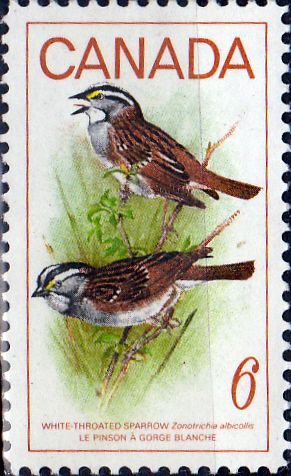 Canada 1969 Birds Fine Mint SG 638 Scott 496 Other British Commonwealth Stamps for sale here