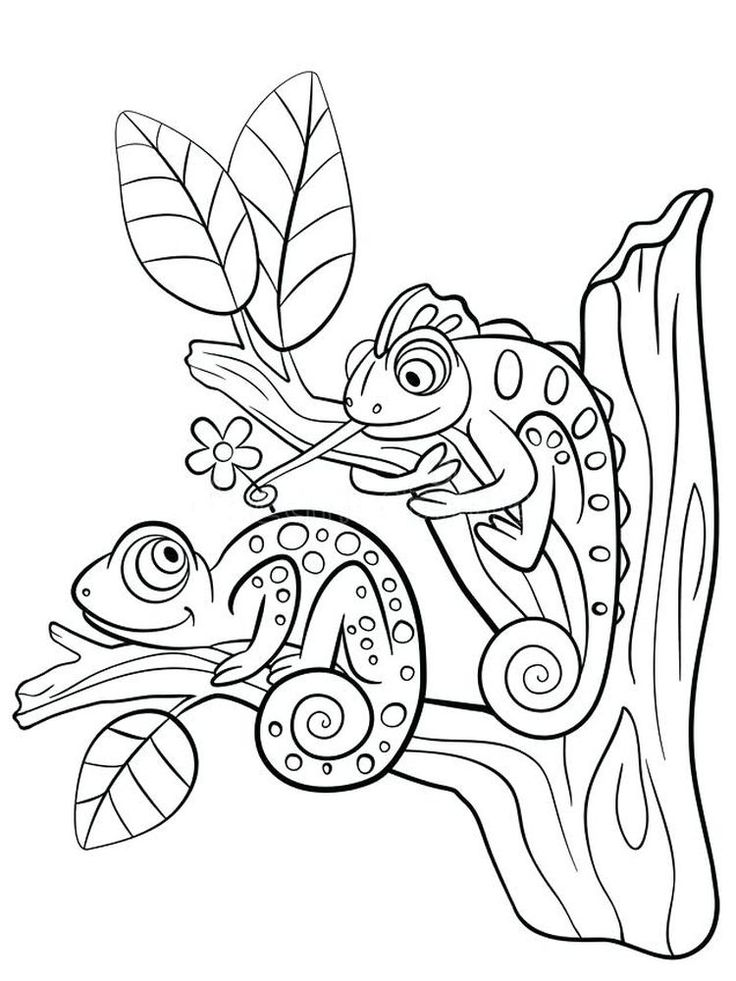 Lizard Coloring Book Pages. Lizards are fourlegged scaly