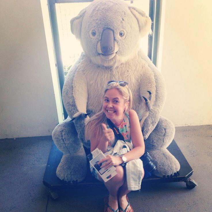 Zoo time!!!! #Taronga #zoo #Sydney #koala #yay