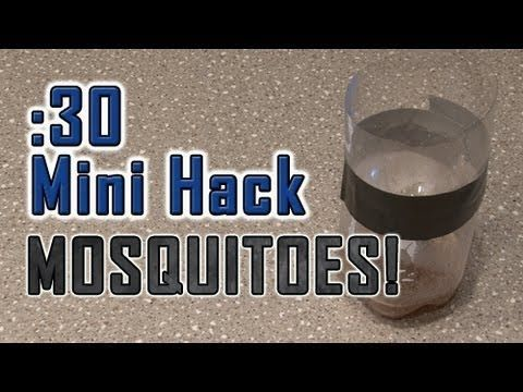 How To Get Rid Of PESKY MOSQUITOES! : Video Clips From The Coolest One