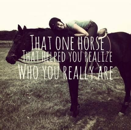 That one horse that helped you realize who you really are