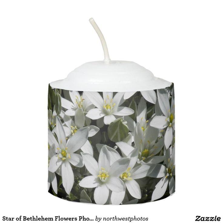 Star of Bethlehem Flowers Photo Votive Candle