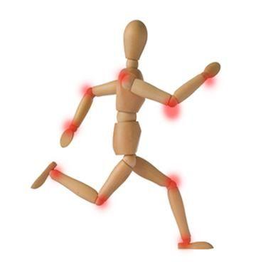 """Las articulaciones son el punto en el que los huesos del esqueleto entran en contacto entre si, formando las estructuras que permiten la flexibilidad y movilidad del cuerpo. Están formadas por el cartílago, una tipo de tejido conectivo fibroso y bastante resistente al desgaste, que hace de """"almohadilla"""" evitando el contacto entre los huesos. Algunas articulaciones son rígidas como las de los huesos del cráneo, o presentan movilidad escasa, como en la unión del pubis, mientras que las…"""