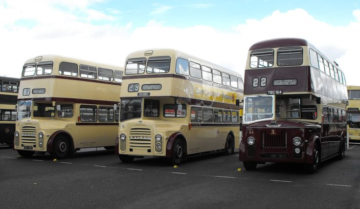 https://flic.kr/p/MKrZLi | Classic LCT Leyland Titans @ Showbus 2016 | Seen at Doningnton Park whilst attending Showbus 2016 are ex-Leicester City Transport Leyland Titans: no.48, GRY 48D with MCW Orion Bodywork, no.90, 90 HBC, with East Lancs Bodywork, and no 164, TBC 164, with Willowbrook Bodywork.