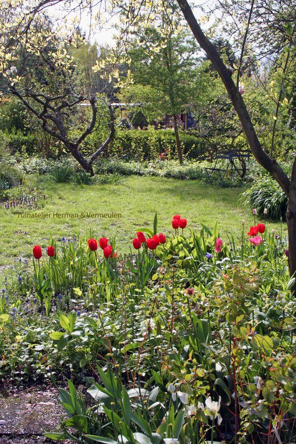Tuinatelier Herman & Vermeulen | Tulpen passen goed in een ...