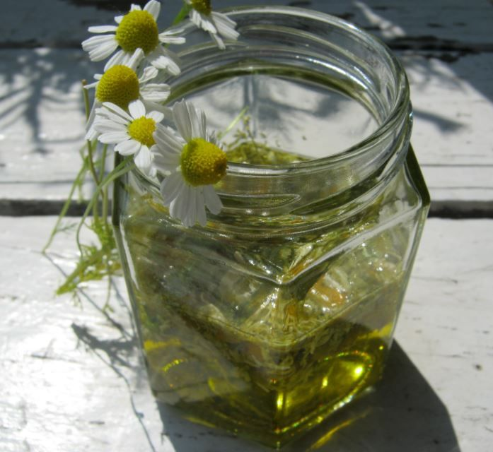 Maak je eigen verzachtende en huidverzorgende kamille olie met gedroogde kamillebloemen en plantaardige olie. Meer info zie website.