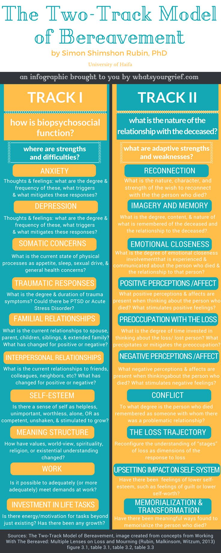 two-track model of bereavement infographic