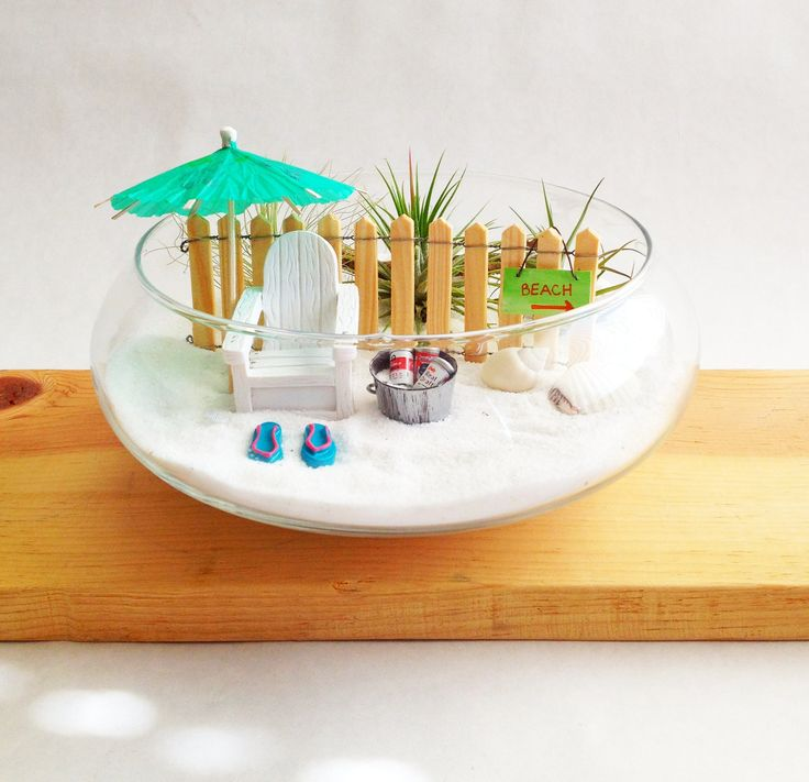 Beach Garden Terrarium. Air Plants. Beach Miniatures.. $36.00, via Etsy.    So cute!  For my desk at work!!