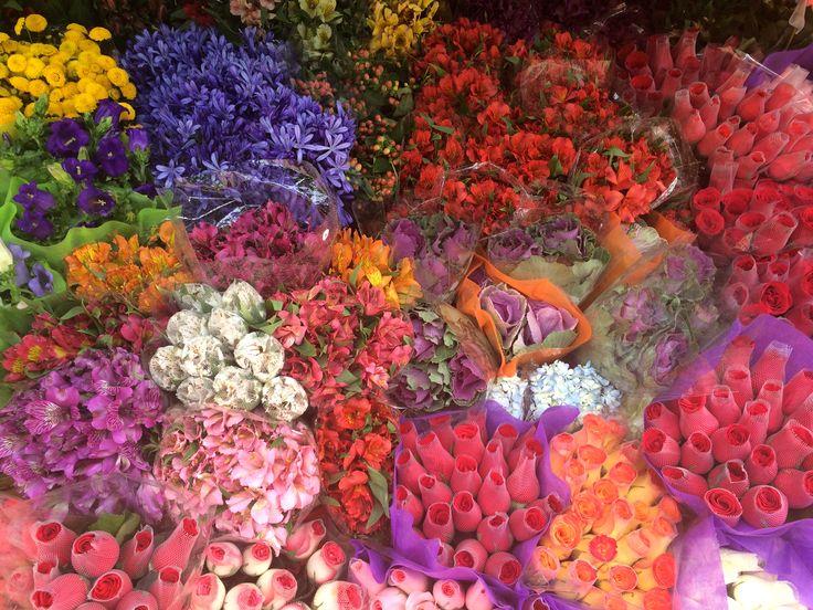 Flowers in Bogota – Club Paraiso
