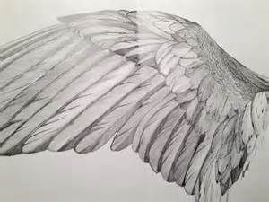 wings pencil drawings - Yahoo Image Search Results | angel ...