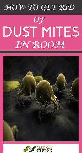 270 Best Allergy Symptoms Images On Pinterest Allergy