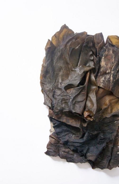 Re-Sea Me by Studio Nienke Hoogvliet - News - Frameweb