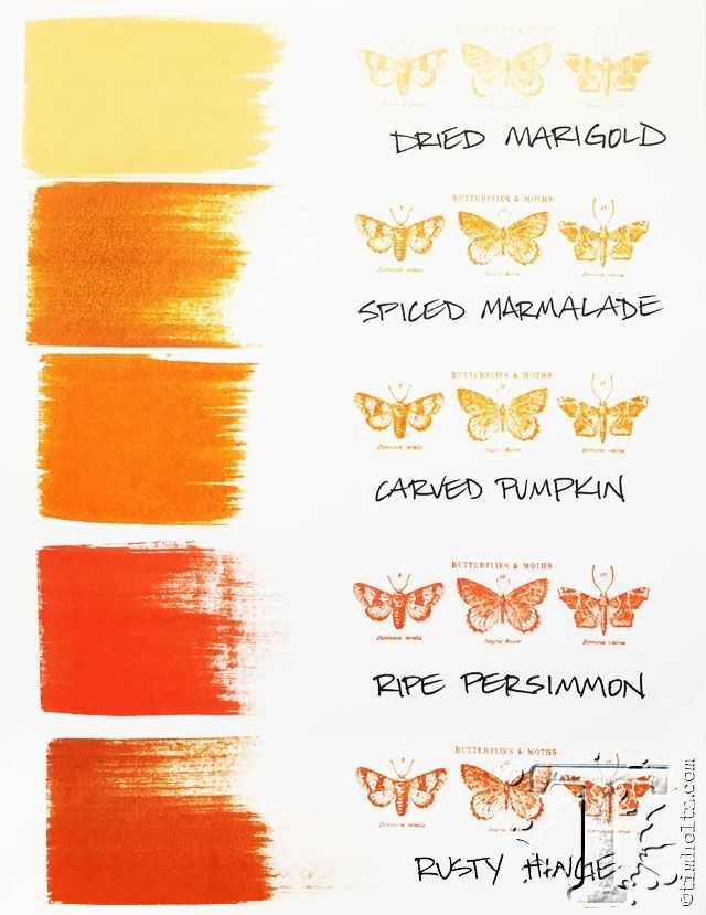 Tim Holtz New Distress Color - here's how it fits into the distress color palette! www.simplepleasuresstamps.com