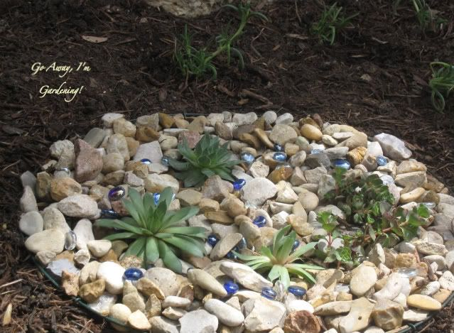 11 best rock garden ideas images on pinterest backyard for Simple rock garden designs