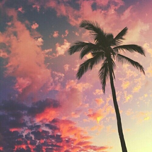 beautiful, landscape, nature, paradise, pink, sky, summer, travel