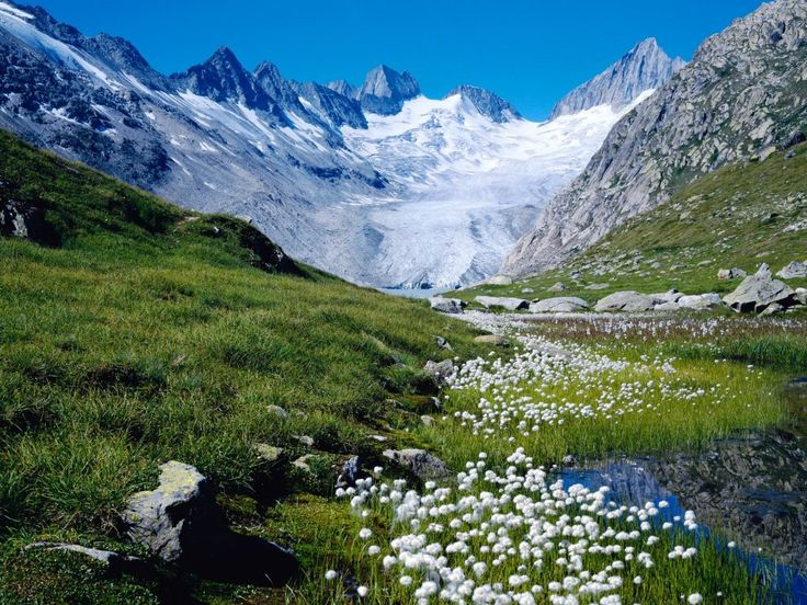 I have been to that very place.  It was just as beautiful.  Looks like the glacier we went to.