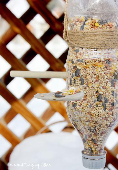 Taking Care of Backyard Birds This Winter: Make A Simple DIY Bird Feeder