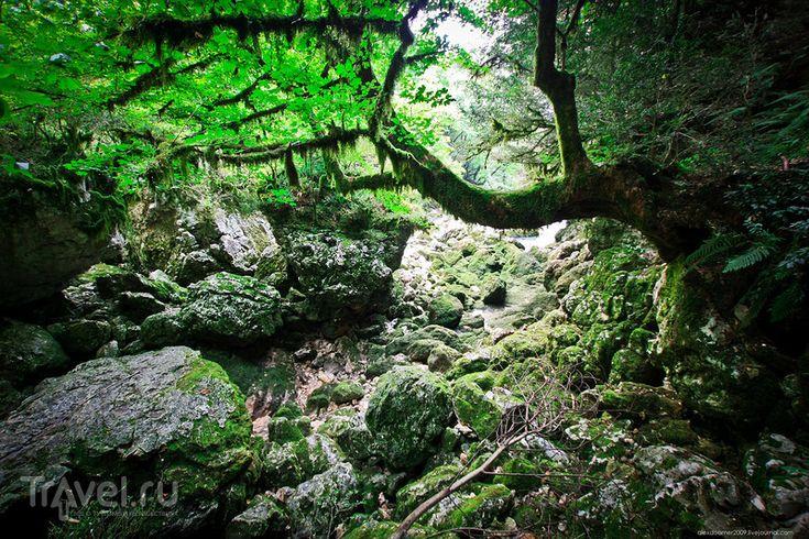 Абхазия. Избранное. Природные чудеса и заброшенные места