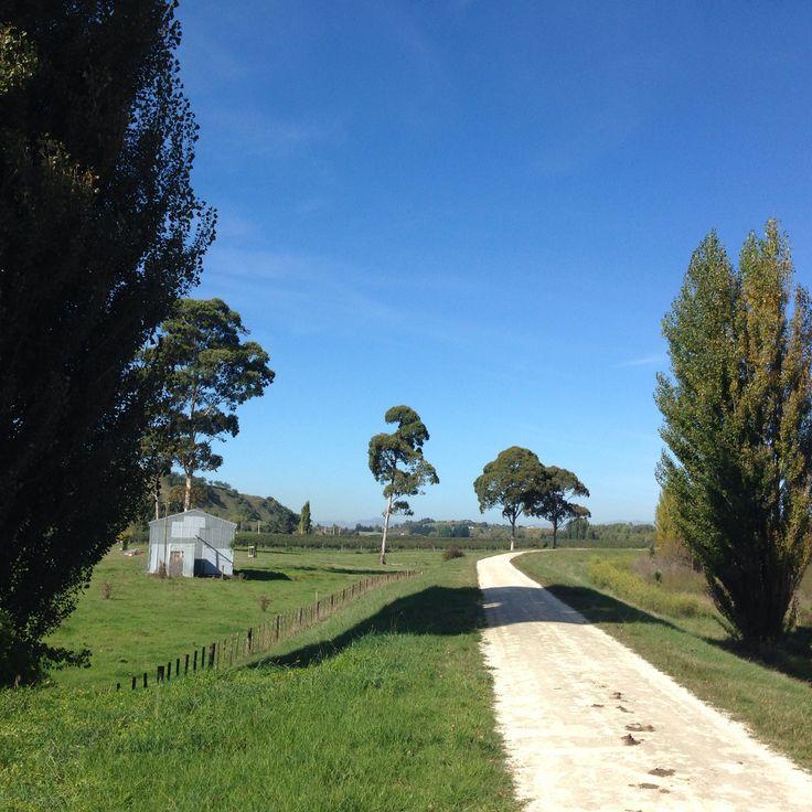 Hawkes Bay cycle way April 2015 NZ