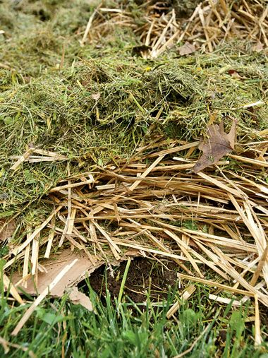 The easiest way to convert lawn into garden. Organic Gardening Magazine Goodbye Grass, Hello Garden The best way to convert a lawn into a garden does not employ a shovel or a sod cutter and will sa...