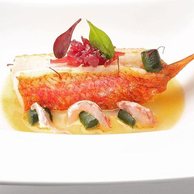 "JRE FOOD TOUR Chef JRE Gennaro Esposito ristorante Torre del Saracino Vico Equense (NA) http://www.torredelsaracino.it#jrefoodtour #jrestartoftour  #eightysevenjre #torredelsaracino #aroundnaples #anjoynaples #napoli #colour #creativity #instafood #foodie #gourmet  #foodpic #foodphotografy  #amazing #delicious #theartofplating #deliciousfood  #arounditaly #enjoy  #ristorante #foodie #photooftheday  #tasteflavours #michelin #starsmichelin @michelinstarfood ""Triglia in umido con gnocchi di…"