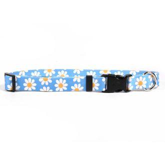 Blue Daisy Dog Collar by Yellow Dog Design, Inc - Order Today at HotDogCollars.com