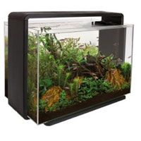 Superfish Home 80Aquarium Black 80 L Simulates a natural sunrise by intensifying the light level slowly to a maximum over a 30 second period. Ideal for Aquascaping http://www.MightGet.com/february-2017-2/superfish-home-80aquarium-black-80-l.asp