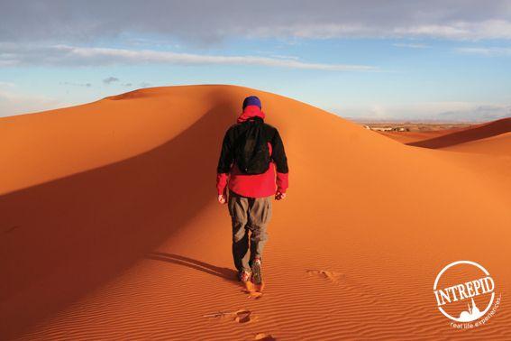 morocco_sahara_sand-dune-stroll_logo1.jpg (567×378)