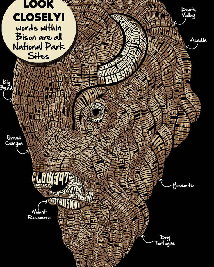 Wow. Look closely at this rad new design from @flow397 available on t-shirts and hoodies. The entire bison is made of words and each word is a different national park. Can you find Yosemite? Grand Canyon? How about Arches? From the brand that combines passion with purpose and donates 3.97% from every item sold to our national parks & public lands. Find them @flow397 or www.flow397.com  Live Give Be Fulfilled