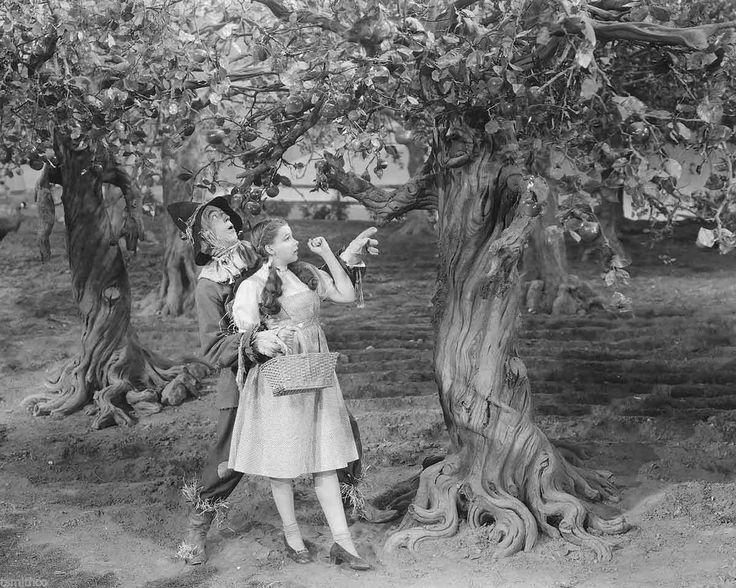Judy Garland and Ray Bolger Wizard of oz 8x10 Photo 008 | eBay