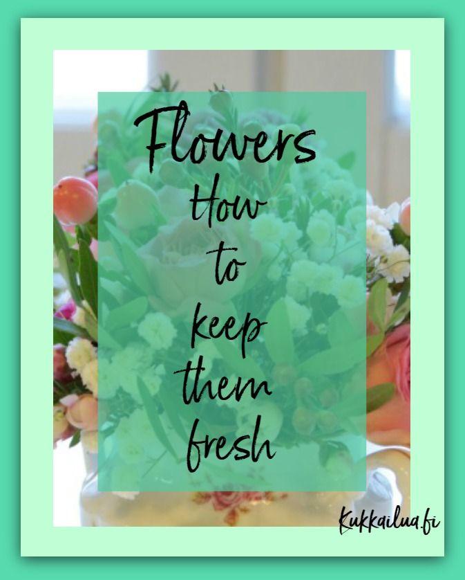 Kukkailua |   Which Cut Flowers Last Longest?