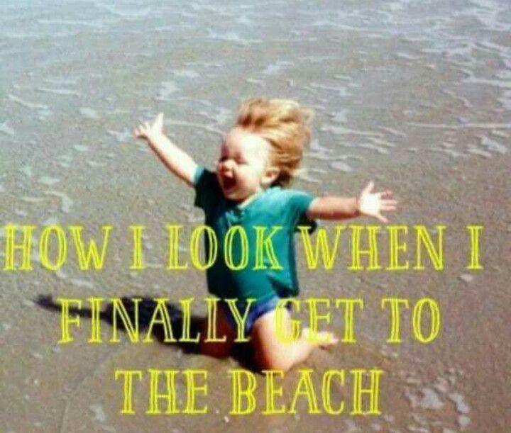 The 25+ Best Beach Memes Ideas On Pinterest