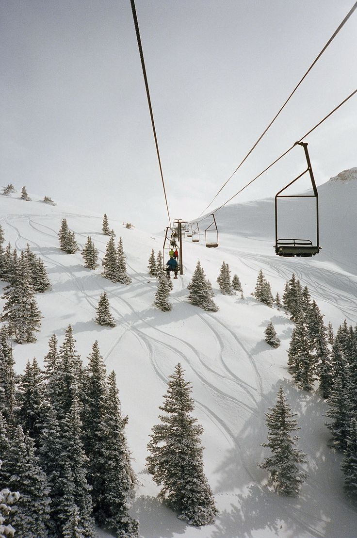 Closed with Callie) I was on the ski lift and Gunner happened to be there at the same time.